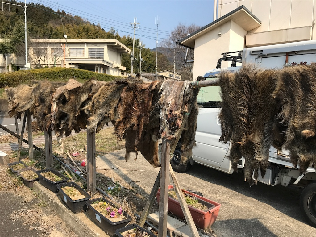 f:id:kyohei0212:20170329221954j:image