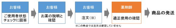 f:id:kyoheing-on-japan69:20170528093521p:plain