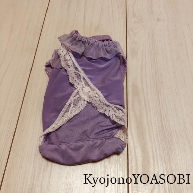 f:id:kyojonoyoasobi:20210315194121j:plain