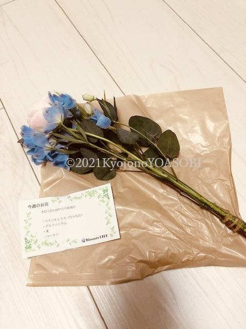f:id:kyojonoyoasobi:20210315215101j:plain