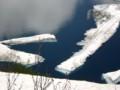 みくりが池の浮き氷