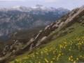 トリグラフ山遠望