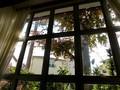 窓から眺めると
