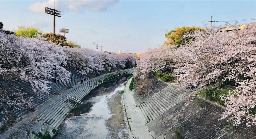 f:id:kyoko-sodan:20180403031122j:image