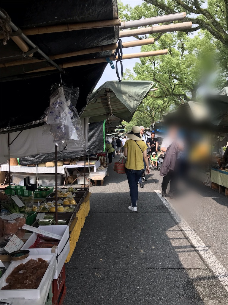 f:id:kyoko007go:20190821233649j:image