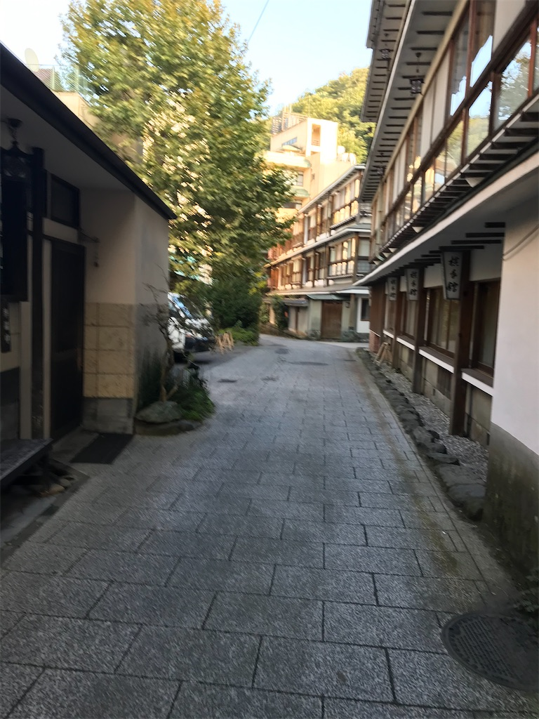 f:id:kyoko007go:20201013230543j:image