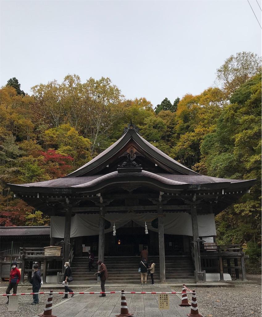 f:id:kyoko007go:20201115222529j:image