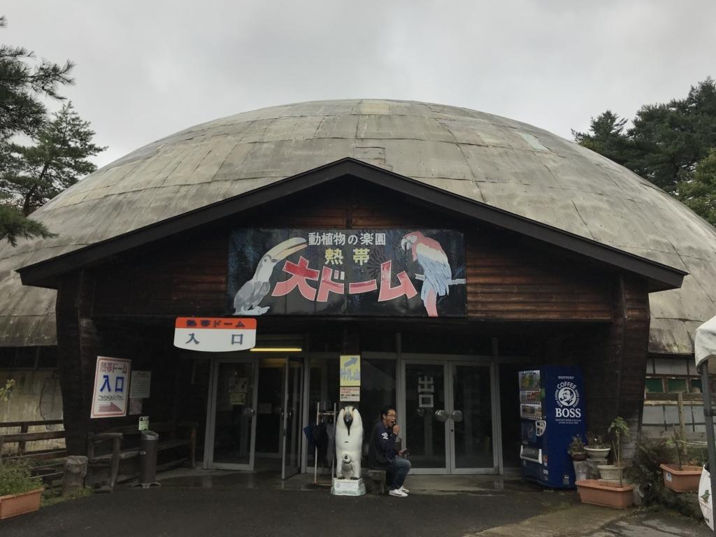 f:id:kyoko1003:20171015210307j:plain