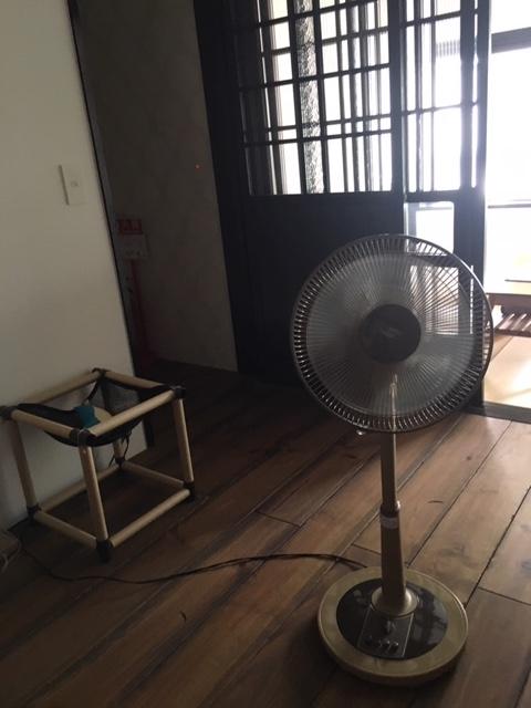f:id:kyoko8064:20190527124607j:plain