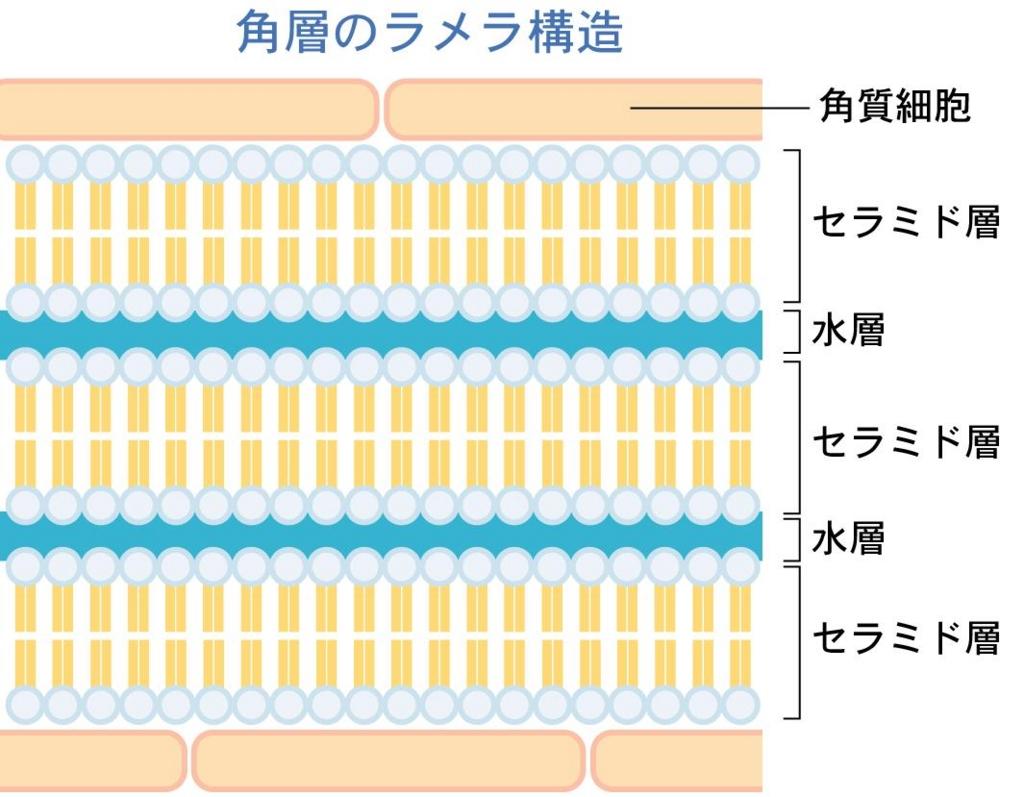 f:id:kyokocanarysan:20170424102630j:plain