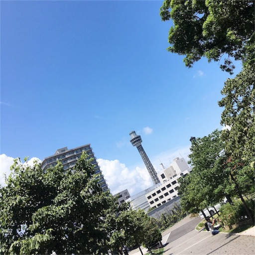 f:id:kyokocanarysan:20180729213901j:image