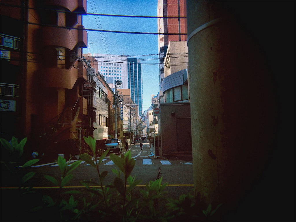 f:id:kyokocanarysan:20181216124654j:image
