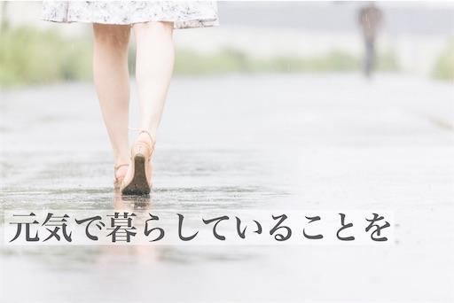 f:id:kyokocanarysan:20190609001620j:plain