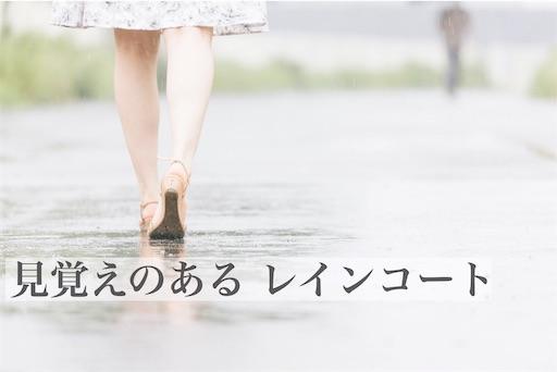 f:id:kyokocanarysan:20190609001624j:plain