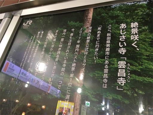 f:id:kyokocanarysan:20190612081713j:image