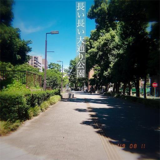 f:id:kyokocanarysan:20190812024849j:image