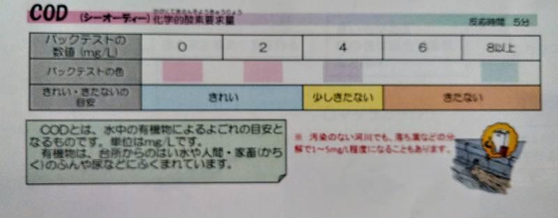 f:id:kyokoippoppo:20200827180157j:plain