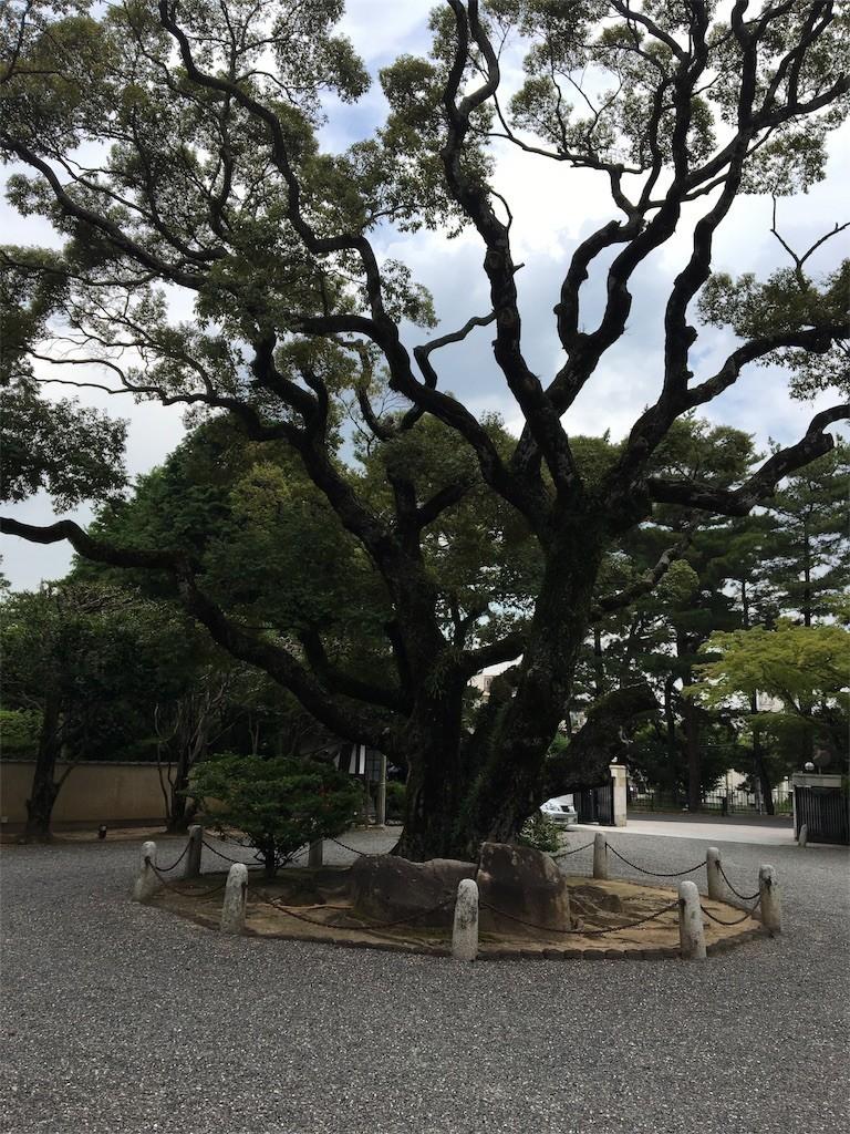 f:id:kyokokwanau:20170718200627j:image