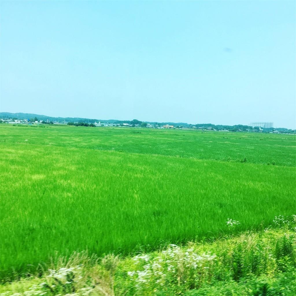 f:id:kyokokwanau:20170726160022j:image