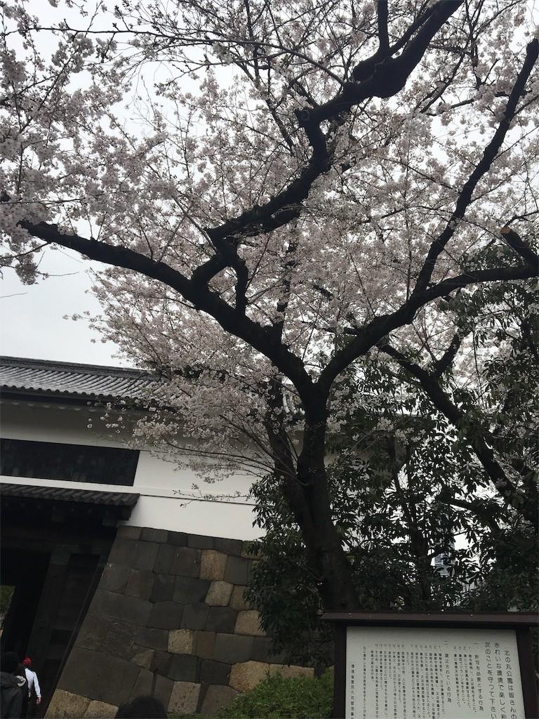 f:id:kyokokwanau:20190413101439j:image