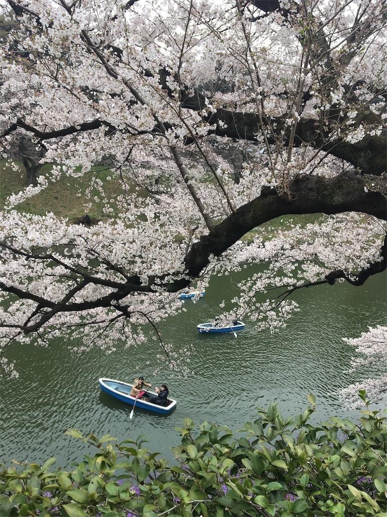 f:id:kyokokwanau:20190413101443j:image