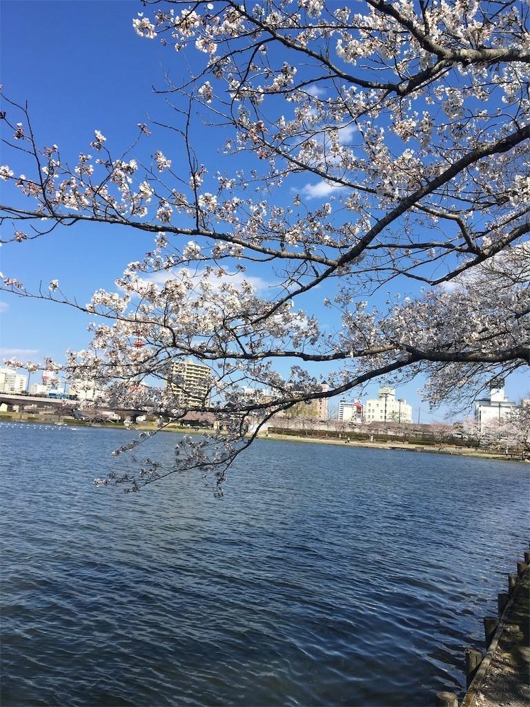 f:id:kyokokwanau:20190413101925j:image