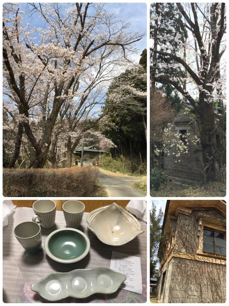 f:id:kyokokwanau:20190414115917j:image