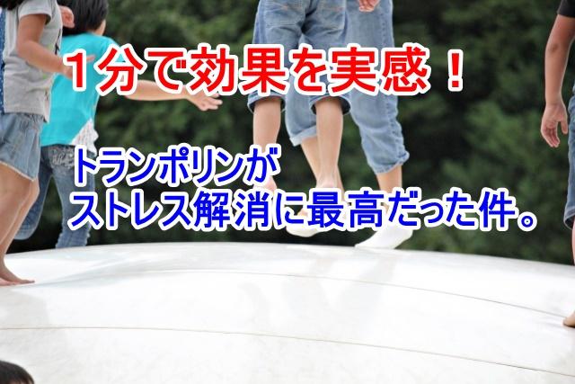 f:id:kyon-rog:20171205194221j:plain