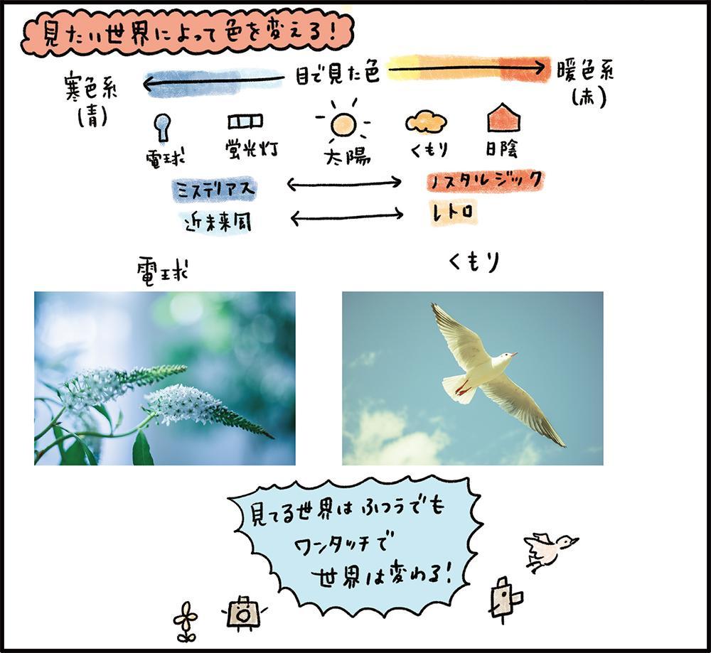 f:id:kyon-rog:20180524215958j:plain