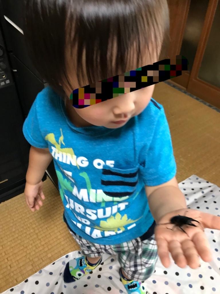 f:id:kyopapa:20180707110818j:plain