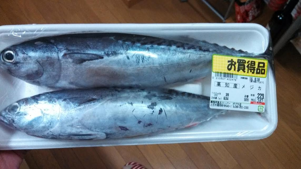 f:id:kyoryokutosa:20160819094514j:plain