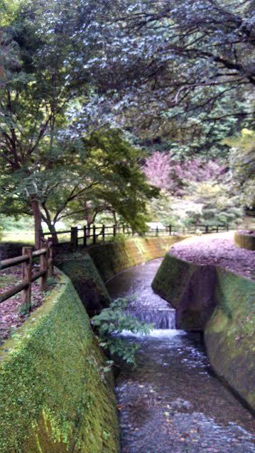 f:id:kyoryokutosa:20161005101021p:plain