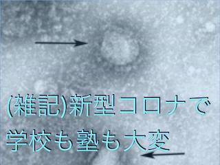 f:id:kyosaika:20200224235417j:plain