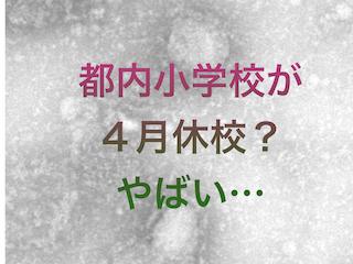 f:id:kyosaika:20200401015218p:plain