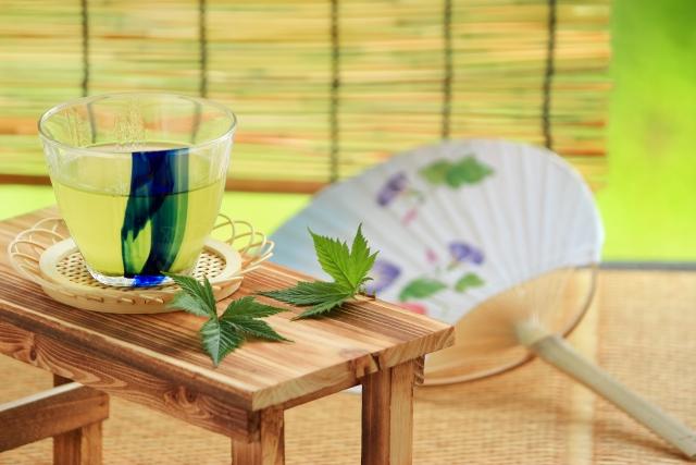 このクソ暑い中あえて行きたい【京都のおすすめ観光スポット】5カ所
