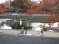 京都新聞写真コンテストワンちゃんもランナーに興味津々。賀茂川にて