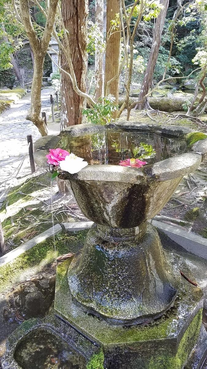 f:id:kyoto_seikatei:20210311113023j:plain