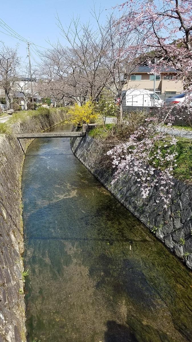 f:id:kyoto_seikatei:20210319112203j:plain