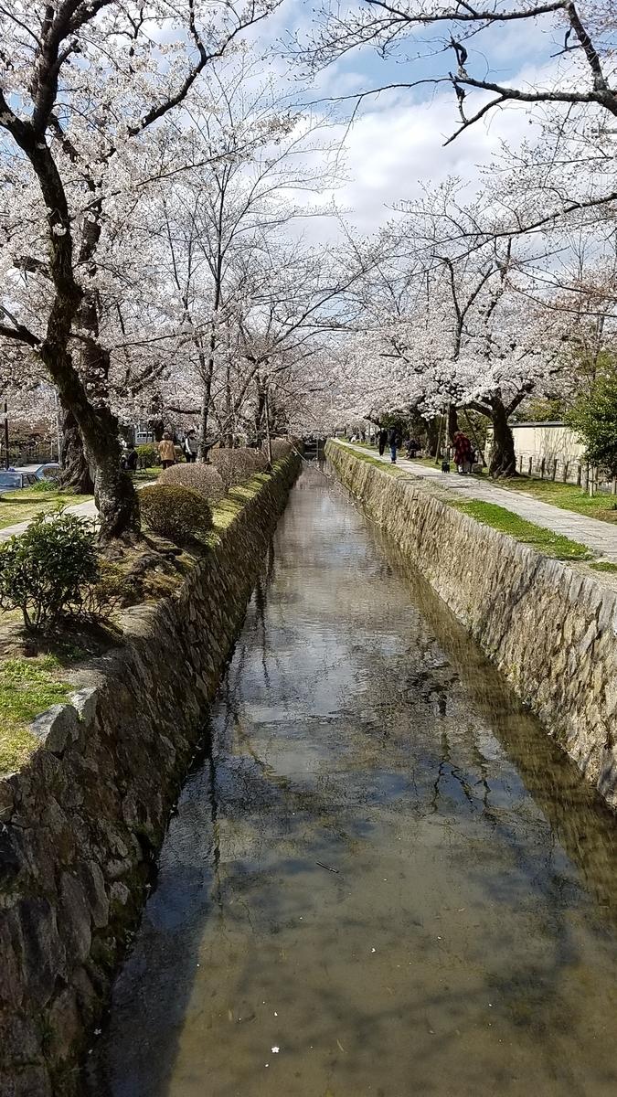 f:id:kyoto_seikatei:20210324123550j:plain
