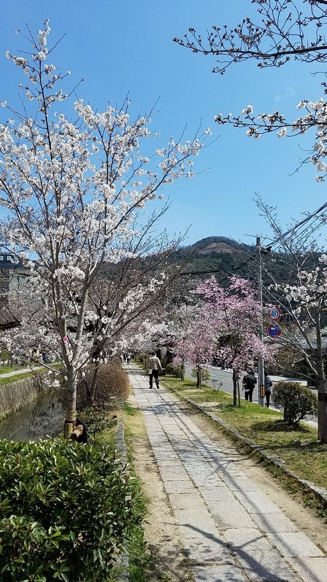 f:id:kyoto_seikatei:20210324123606j:plain