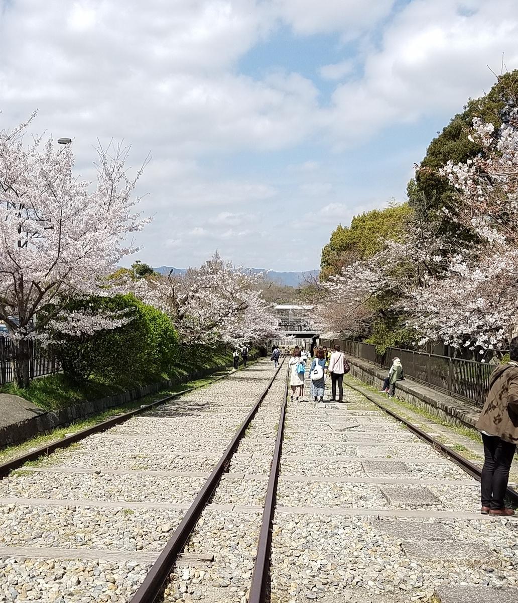 f:id:kyoto_seikatei:20210324123926j:plain