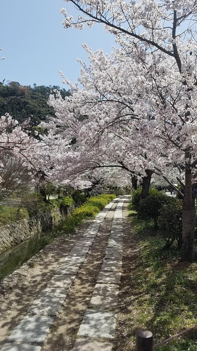 f:id:kyoto_seikatei:20210404154804j:plain