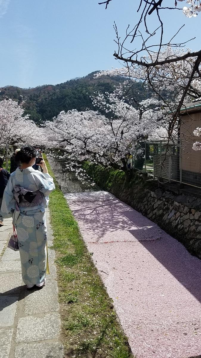 f:id:kyoto_seikatei:20210404154835j:plain