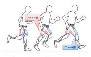 f:id:kyoto_training_center:20190207153350p:plain