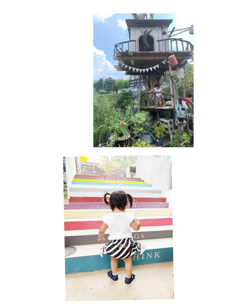 f:id:kyoto_training_center:20190803122836j:image