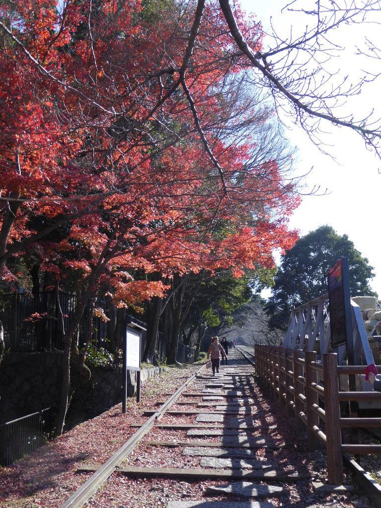 f:id:kyotoburari:20180927062406j:plain
