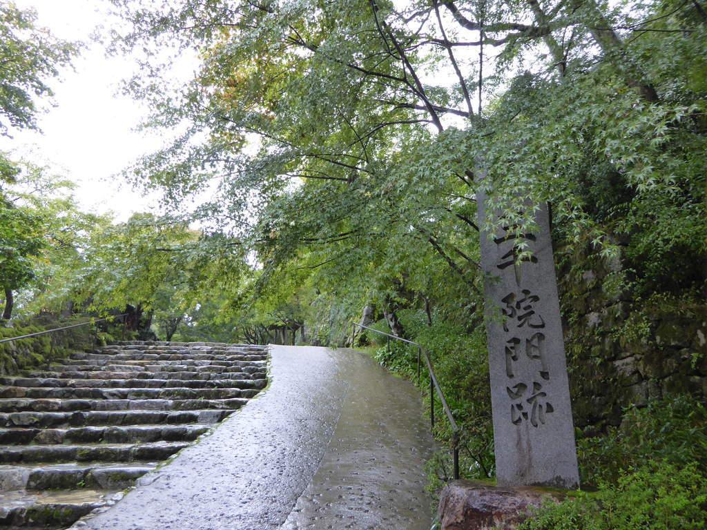 f:id:kyotoburari:20181125153037j:plain