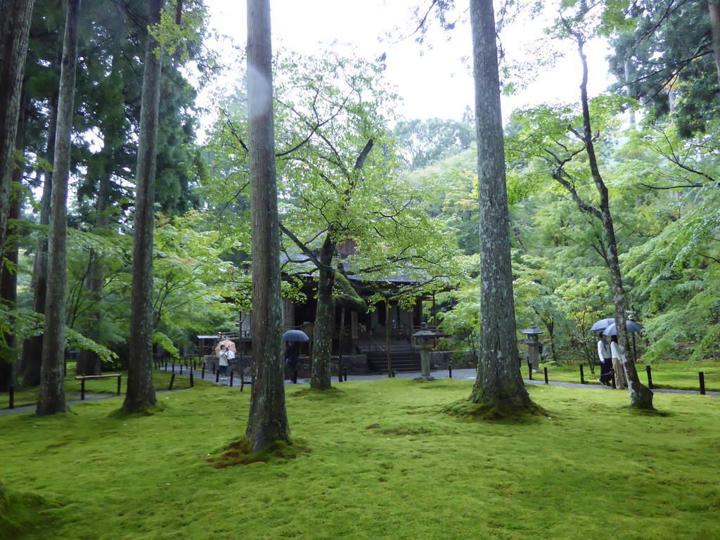 f:id:kyotoburari:20181125164831j:plain