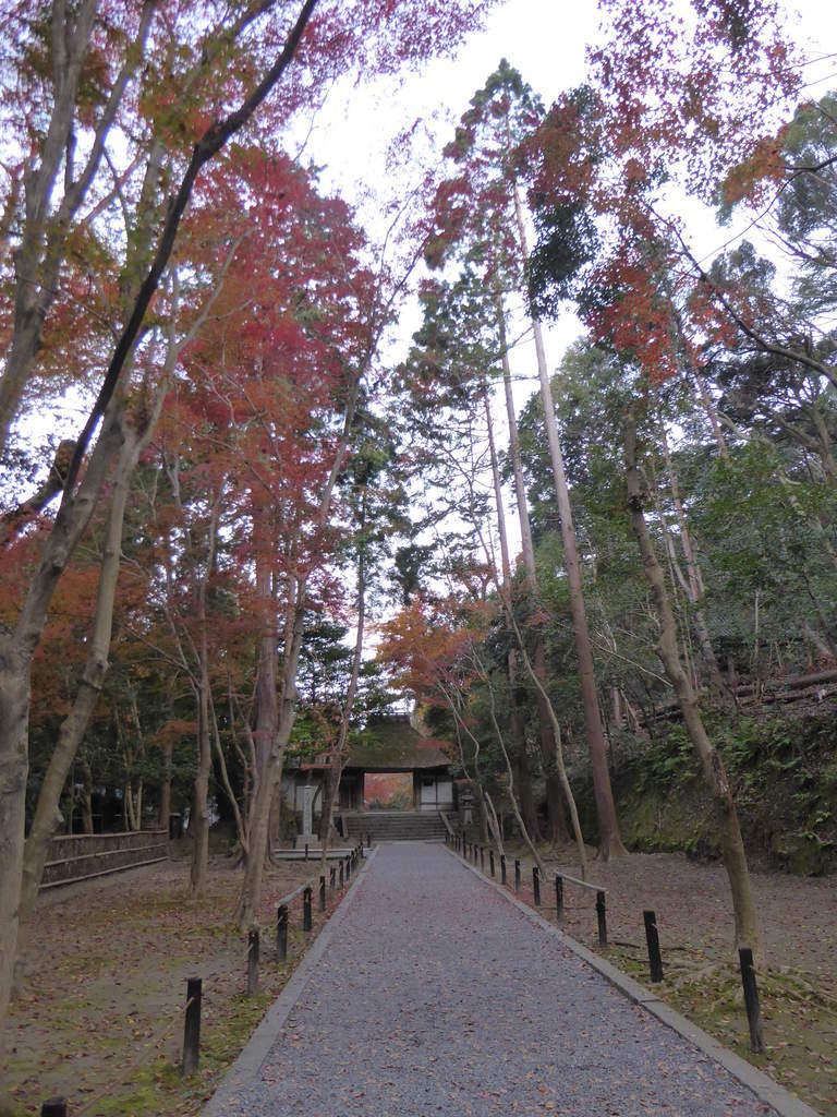 f:id:kyotoburari:20181203201019j:plain