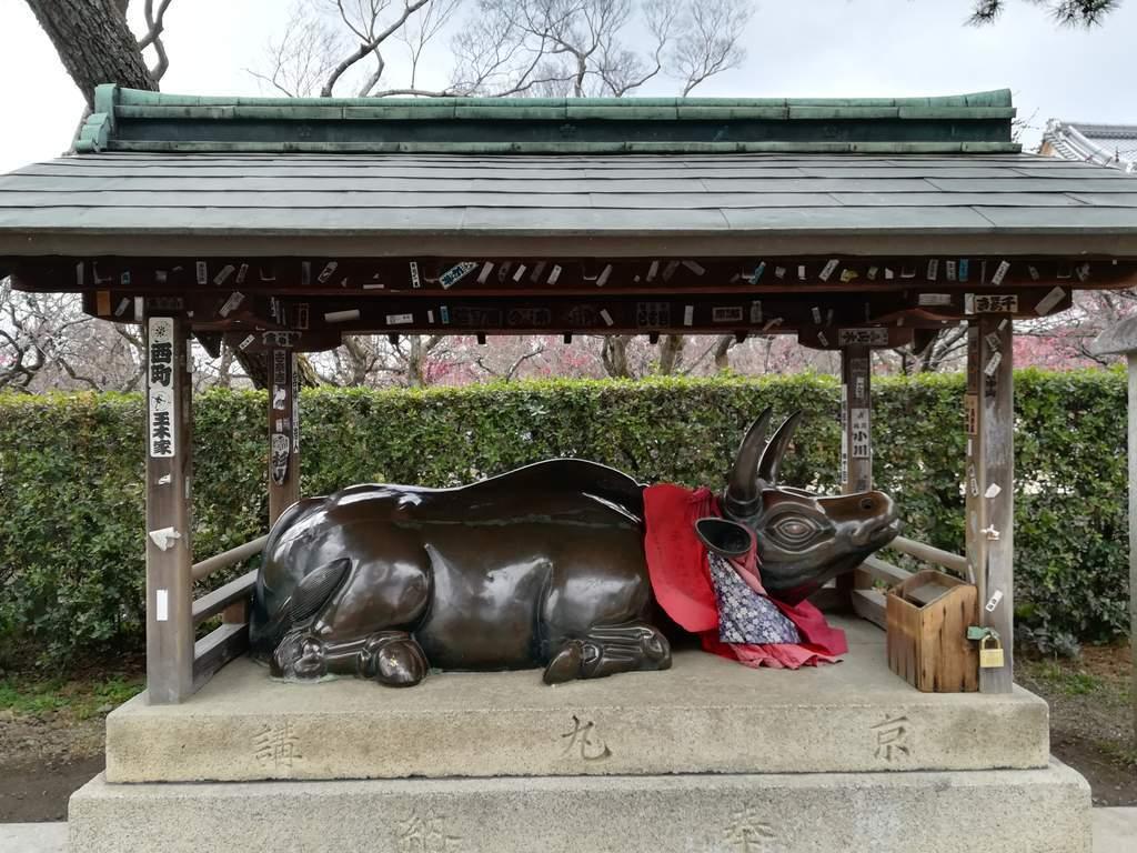 f:id:kyotoburari:20190216111726j:plain